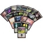 Lot de Cartes Magic the Gathering Lot de 20 terrains de base - Marais - foil
