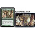 Grandes Cartes Oversized Magic the Gathering Oversized Box Toppers - Verdant Force
