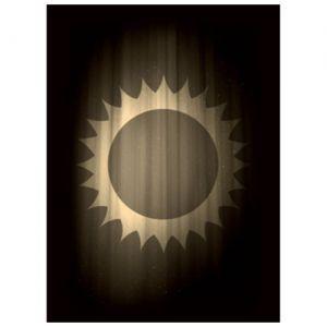 Protèges Cartes illustrées 50 Pochettes - Sun