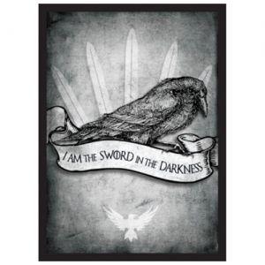 Protèges Cartes illustrées Accessoires Pour Cartes 50 Pochettes - Sword in the Darkness