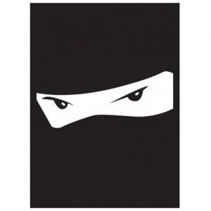 Protèges Cartes illustrées Accessoires Pour Cartes 50 Pochettes  Ninja