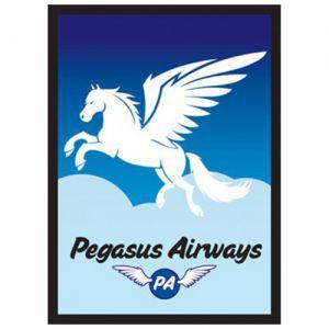 Protèges Cartes illustrées  50 Pochettes - Pegasus Air