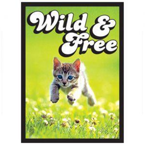 Protèges Cartes illustrées  50 Pochettes - Kitten