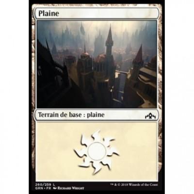 Terrain de base : Plaine / Plains
