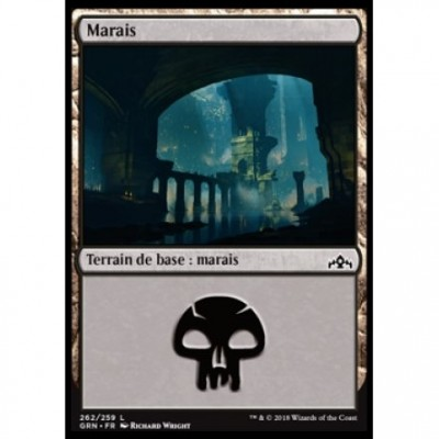 Magic the Gathering Terrain de base : Marais / Swamp