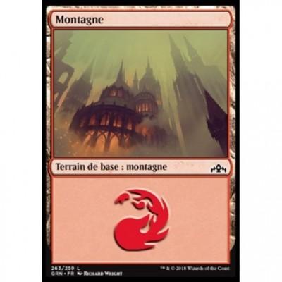 Terrain de base : Montagne / Mountain
