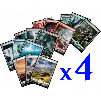 Lot de Cartes Magic the Gathering Lot de 60 Terrain de base Zendikar Rising : Full Art