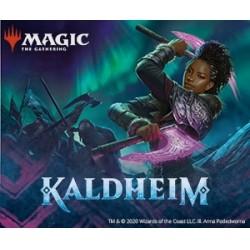 Collection Complète Magic the Gathering Kaldheim - Set Complet